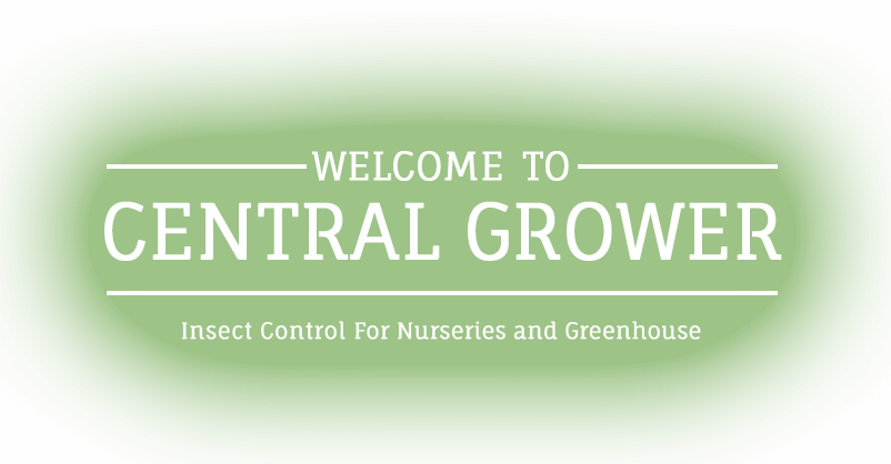 welcome to central grower, professional insect control for nurseries and greenhouse
